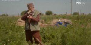 """Jedanaesta epizoda pete sezone popularne serije """"Selo gori, a baba se češlja"""""""