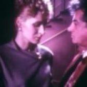 Srebrena lisica (1985) domaći film gledaj online