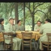 Poseban tretman (1980) domaći film gledaj online