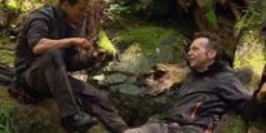 U divljini s Bearom Gryllsom (2014) online sa prevodom