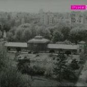 Vetar je stao pred zoru (1959) domaći film gledaj online