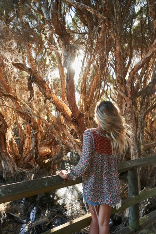 Australia's South West, Bunbury Mangroves