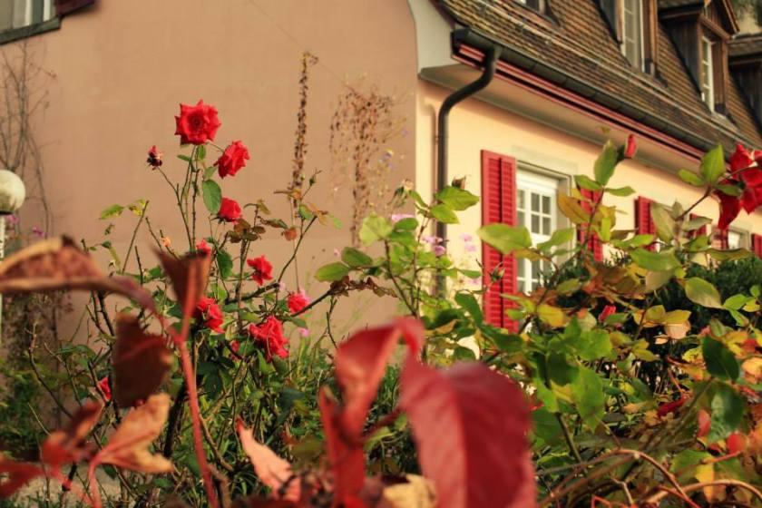 Цюрих,Швейцария (4)