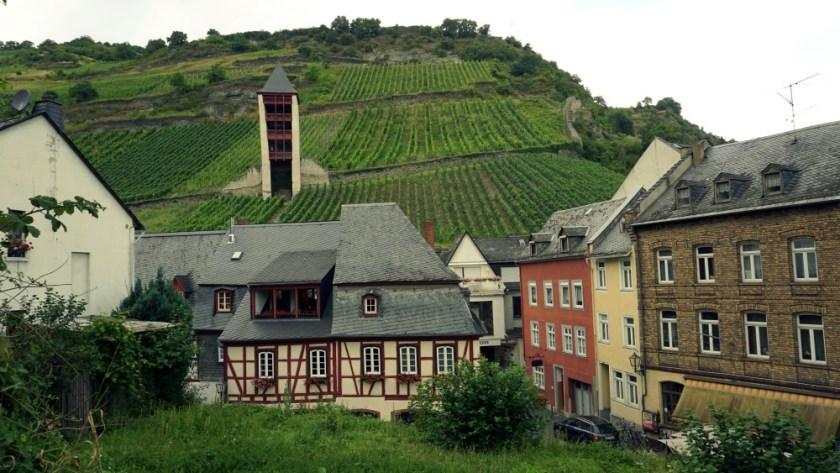 Виногрвдники Мозель Бахарах (1)