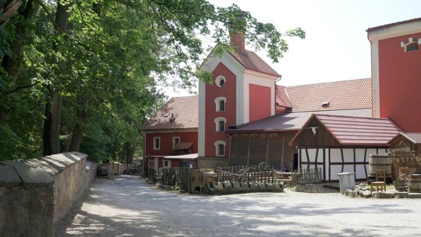 Detenice castle (11)