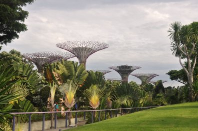 "Die ""Gardens by the Bay"" im Stadtstaat"