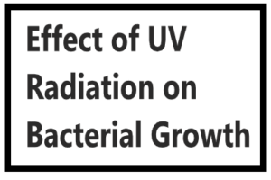 Effect of UV Radiation on Bacterial Growth 1