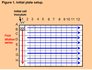 Cloning by Serial Dilution in 96 Well Plates