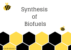 Synthesis of Biofuels
