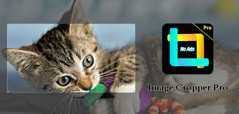 Image Cropper Pro for Android - Crop and Resize Images Easily