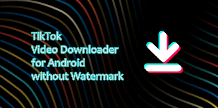 TikTok Video Downloader app for Android no Watermark
