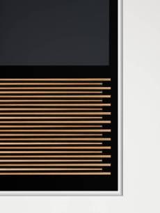 Bang & Olufsen BeoVision 14 c