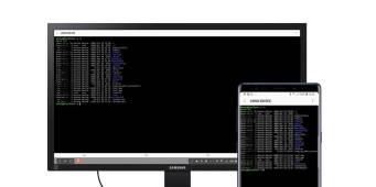 Linux on DeX 3