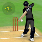 Smashing Cricket a cricket game like none other  3.0.8 APK MOD