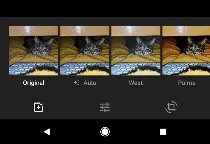 Google Fotos V3.9