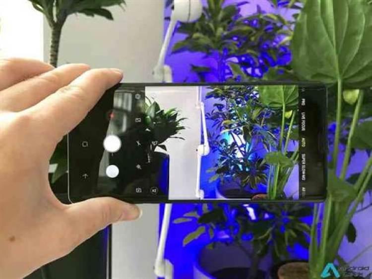 Análise Samsung Galaxy Note 9 - em equipa que ganha não se mexe (muito) 10