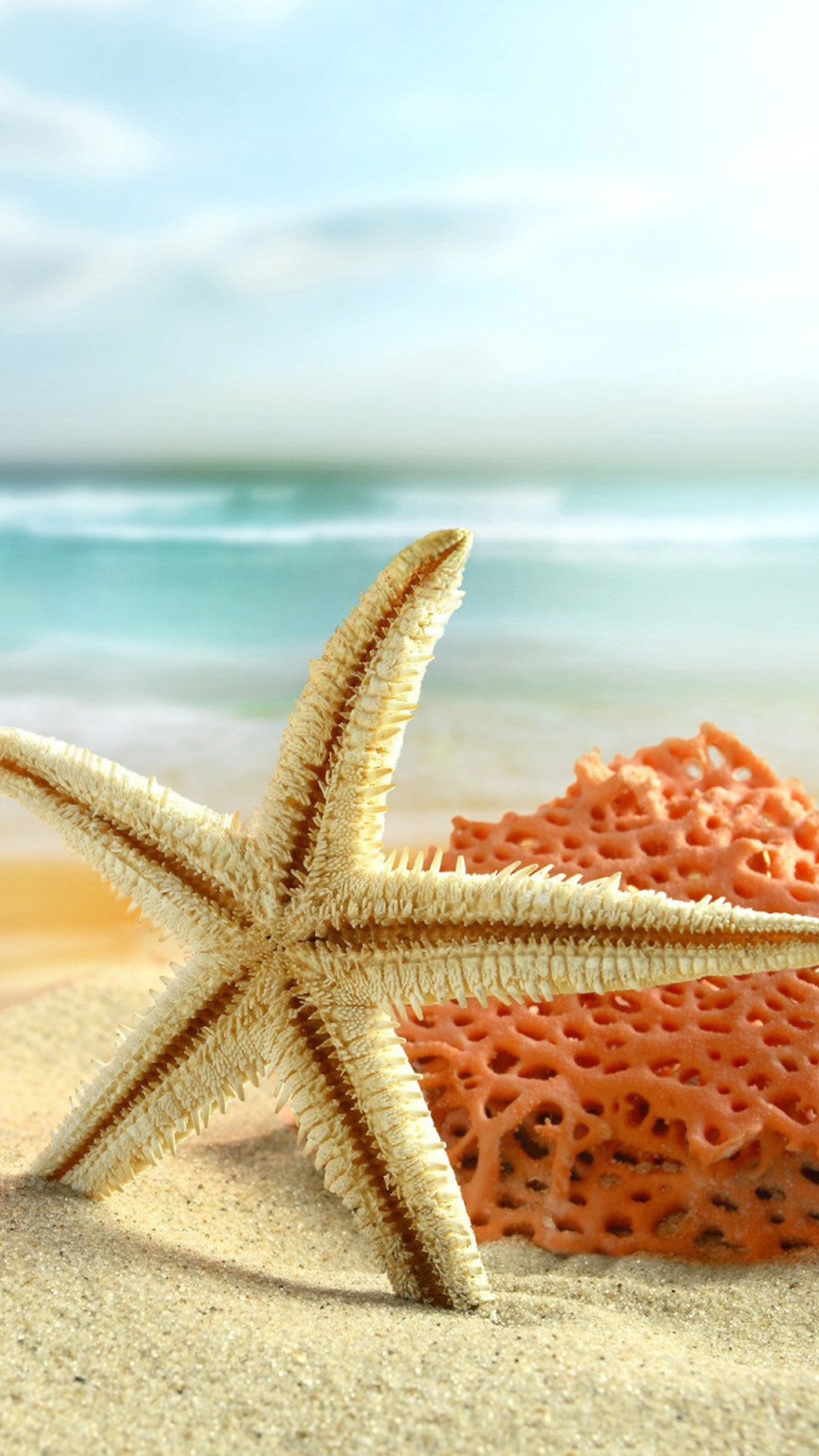 starfish beach toys android wallpaper - android hd wallpapers