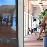 Sehende Menschen leihen Blinden ein Auge per Smartphone