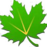 Mehr Leistung und Akkulaufzeit dank Greenify (Root)