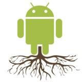 Root Glossar