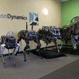 Boston Dynamics: Neuer Roboter namens Spot vorgestellt
