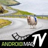 Video: Tierische Idee – Sheep View statt Street View