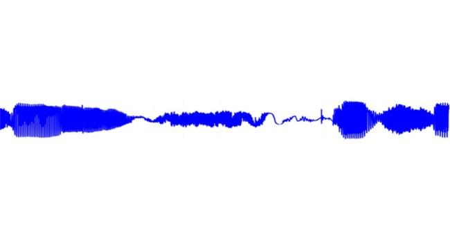 Wellenmuster einer Sprachsequenz von WaveNet (Bild: DeepMind)