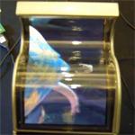 Samsung startet noch dieses Jahr mit der Produktion von flexiblen Displays