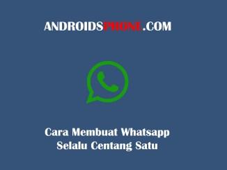 Cara Membuat Whatsapp Selalu Centang Satu Walau Chat Sudah di Baca