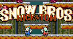 • Download Snow Bros APK