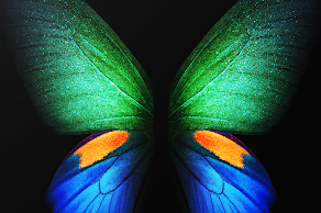 Official Samsung Galaxy Fold Wallpapers