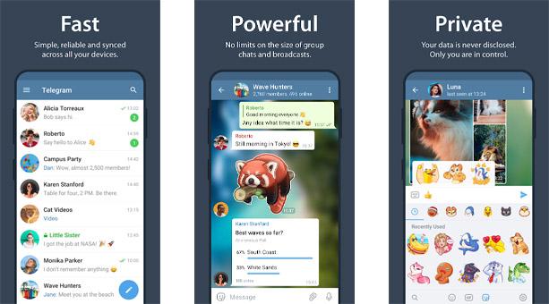 siber saldırılardan korunma uygulaması Telegram
