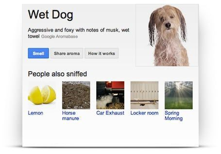 Googl Nose prueba