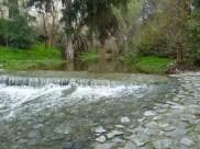 River ped