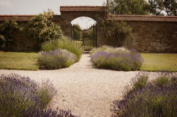 Alistair_Freeman_PoundonHouse_Lavendar_Paths