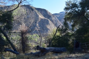 View from our campsite in Los Padres, near Santa Barbara
