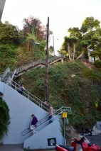 The endless staircase to Coit Tower. This is just the beginning. Like an iceberg.