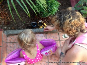Learning and having fun planting watermelon and basil. Things grow fast here!