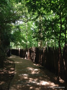 A shady and well-paved path.