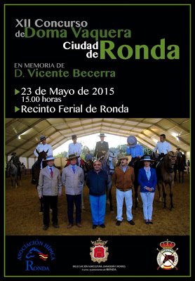 ronda-2015