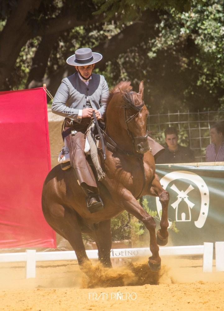 """Amador Martín e """"Indiano"""" en el I Gran Premio Ciudad de Sevilla de Doma Vaquera / Fran Piñero"""