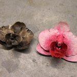 Andy Rader - Bronze - Phalaenopsis