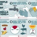 Andy Rader - Social Media - Salmonella Awareness Campaign