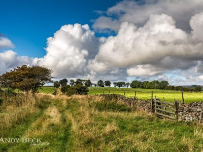 Country lane in Teesdale