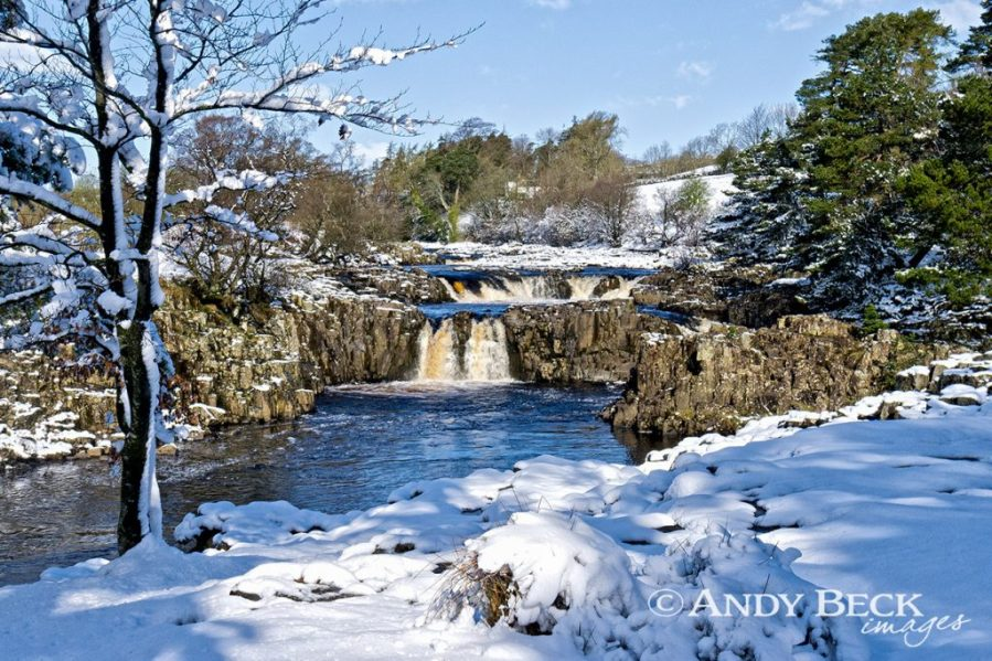 Low Force in snow