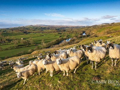 The audience, Whistle Crag, Teesdale