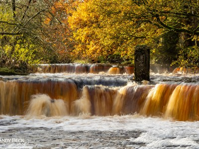Mill Force, Bowes