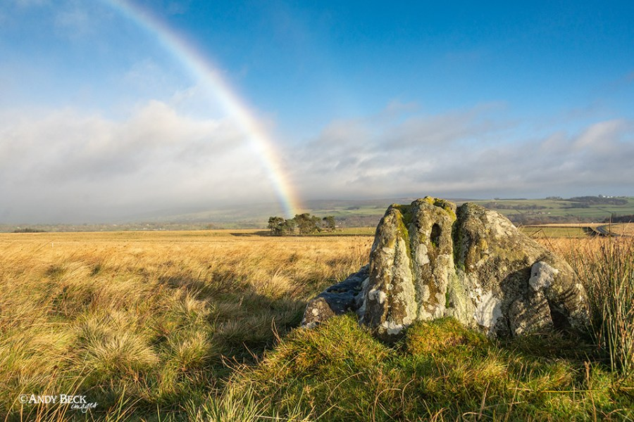The Butterstone Cotherstone Moor
