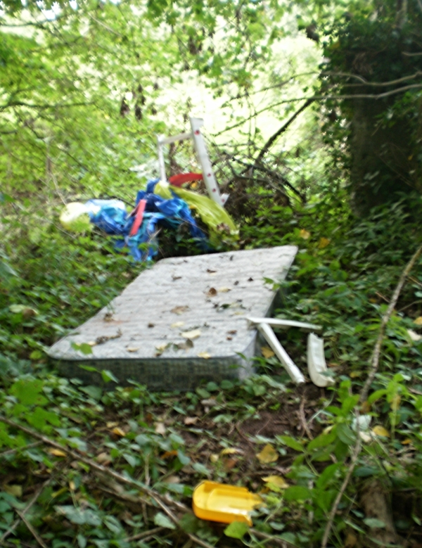 Are all fly-tipping incidents in Shropshire being reported? Probably not