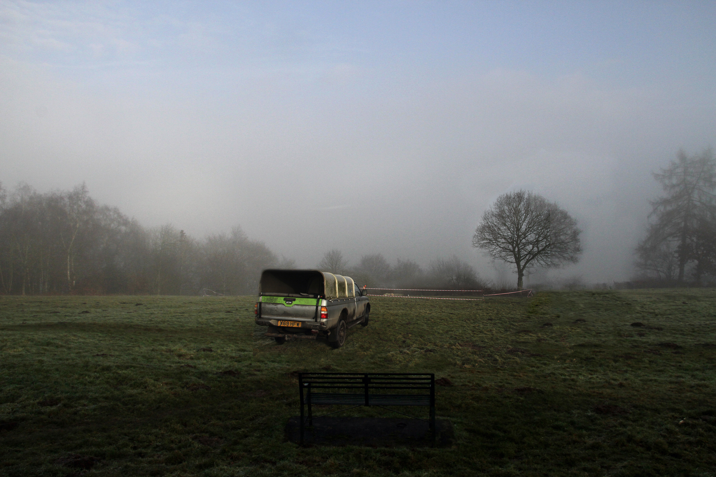 Axing of oak tree on Whitcliffe Common hits reputation of Shropshire Wildlife Trust